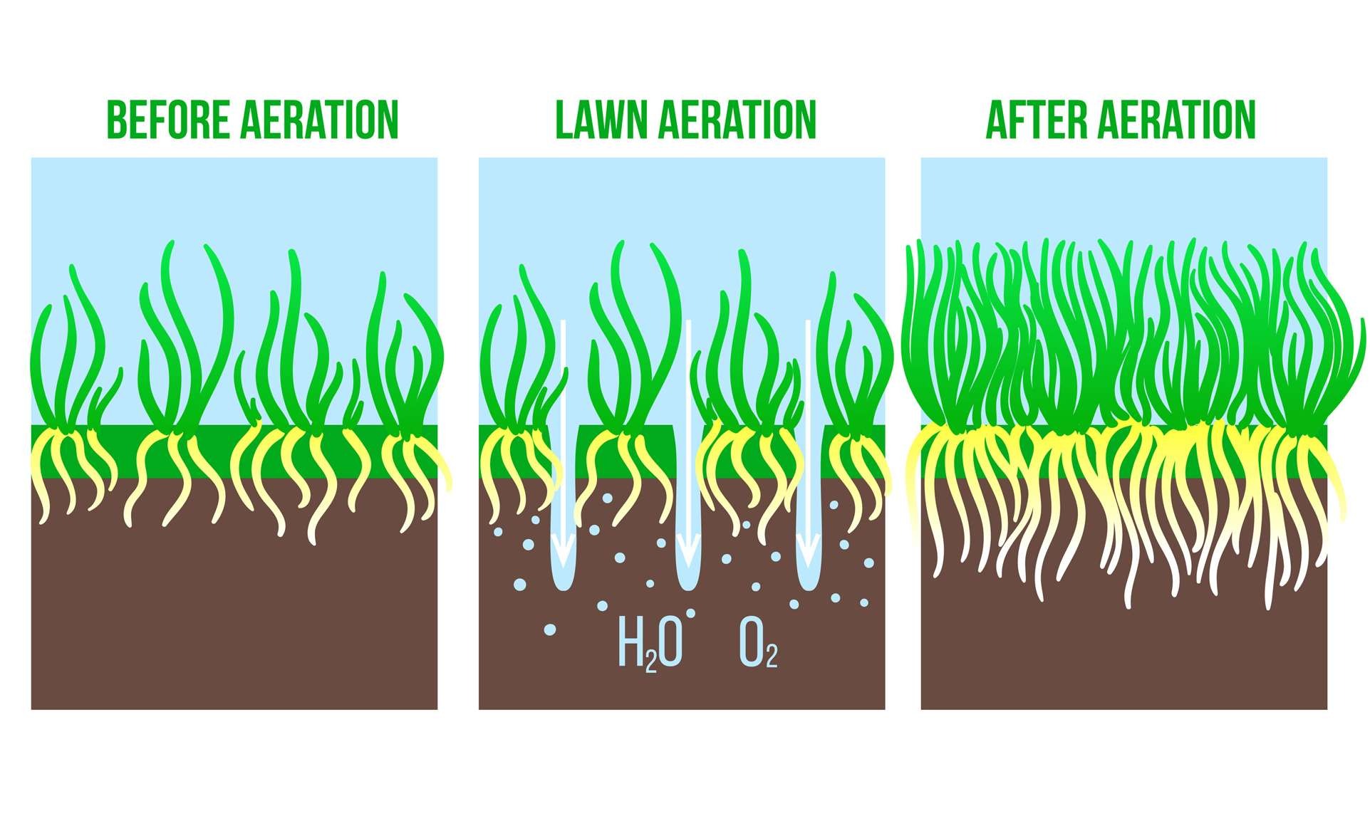 Lawn Aeration in the Beverly, Burlington and Delran, NJ areas